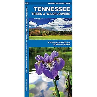 Tennessee Trees & Wildflowers: An Introduction to Familiar Species (Pocket Naturalist Guides)