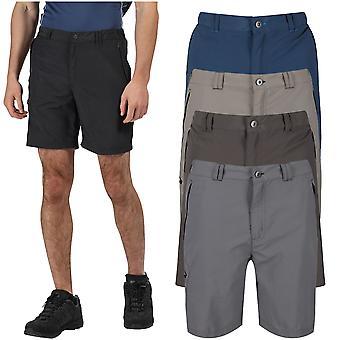 Regatta Mens Leesville II Pantaloni scurți