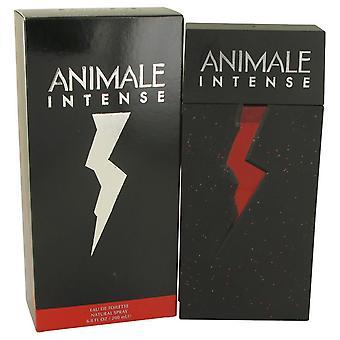 Animale Intense Eau De Toilette Spray By Animale 6.7 oz Eau De Toilette Spray