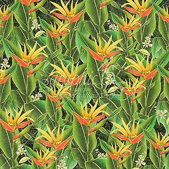 Grafik 45 utopische Felder 12 x 12 Zoll PapierPack