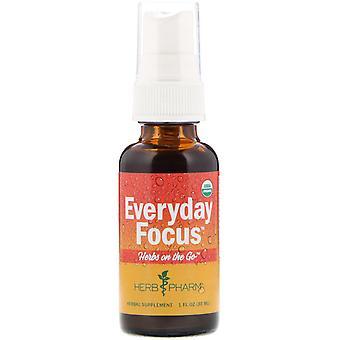 Herb Pharm, Herbs on the Go, Everyday Focus, 1 fl oz (30 ml)