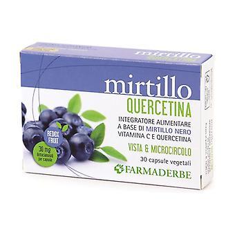 MIRTILLO QUERCETINA 30CPS 30 capsules