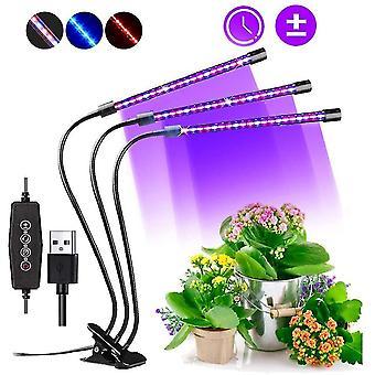 Lampe de plante avec interrupteur de chronométrage