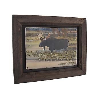 Big Sky Carvers North American Moose Wood Frame Wall Art