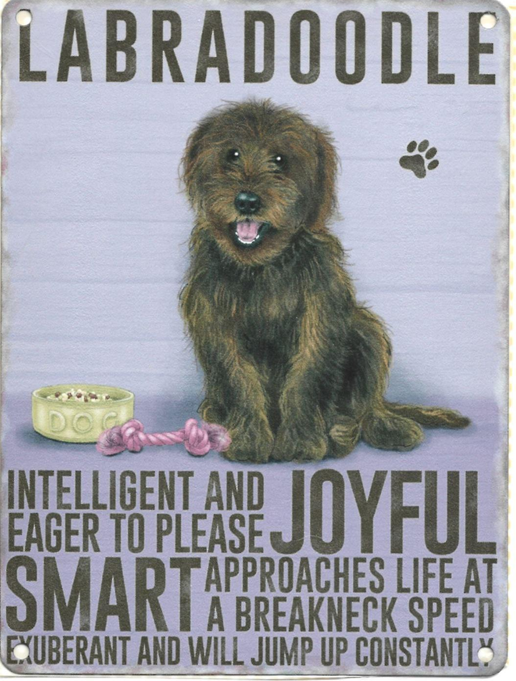 Large Wall Plaque 400mm x 300mm - Brown Labradoodle