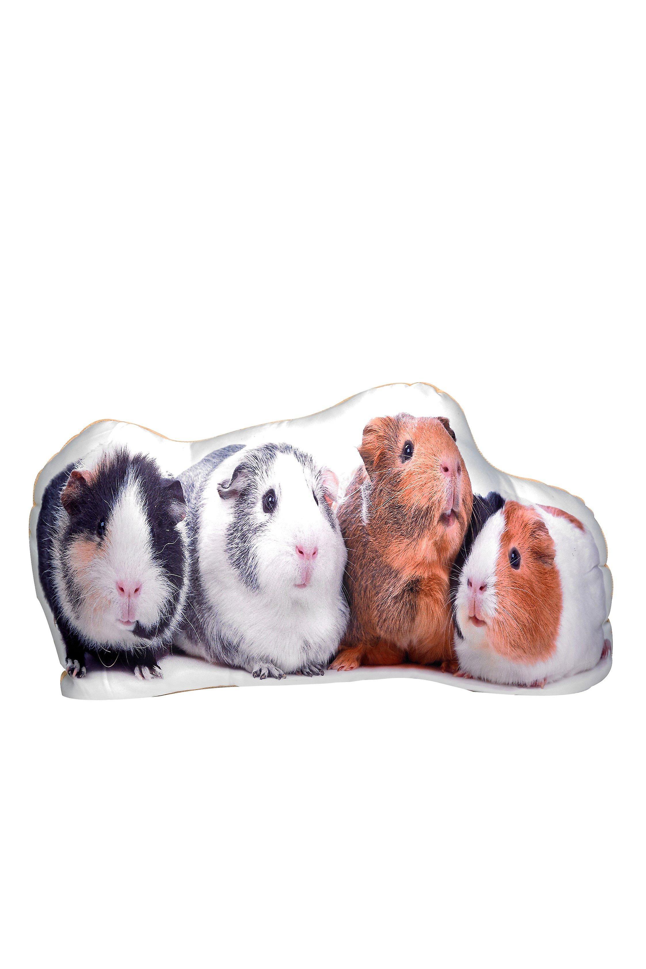 Adorable guinea pig shaped cushion