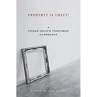 Propriedade é um roubo!: um leitor de Pierre-Joseph Proudhon