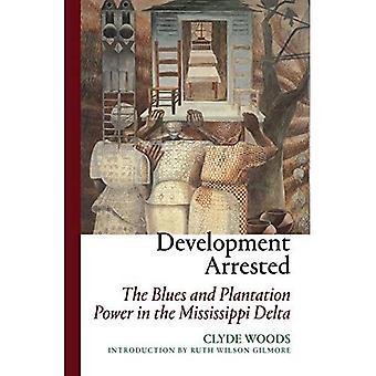 Développement arrêté: Le Blues et le pouvoir de Plantation dans le Delta du Mississippi