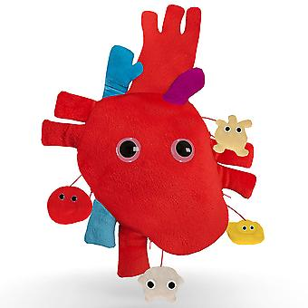 Giant Microbes Heart XL Organ w/ Minies