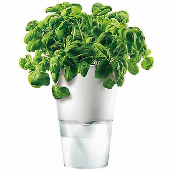 Eva solo blomst potten urt potten selv bewaessernd kalkweiss D 13 cm