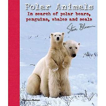 Polar Animals: In Search of Polar Bears, Penguins, Whales and Seals