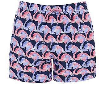 Franks Jupiter Swim Shorts