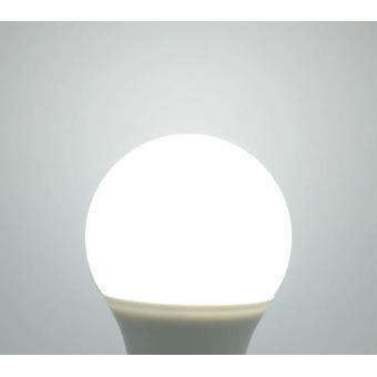 带灯,灯泡,高亮度,兰帕达为家