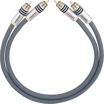 RCA Audio/phono Cable [2x RCA plug (phono) - 2x RCA plug (phono)] 1.00 m Anthracite gold plated connectors Oehlbach NF 14 MASTER