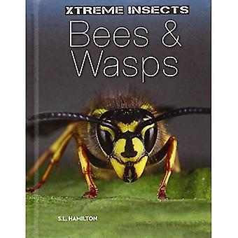 Mehiläiset & ampiaisia (Xtreme hyönteiset)
