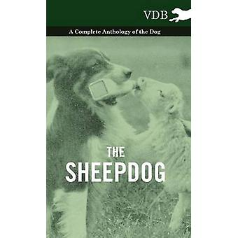 The Sheepdog  A Complete Anthology of the Breeds by Various