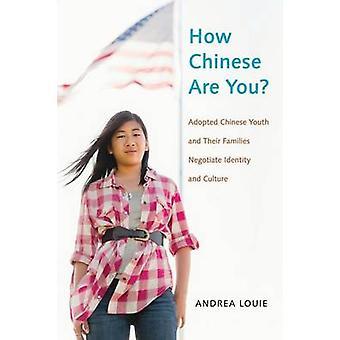 Wie chinesische chinesische Jugend angenommen und ihre Familien verhandeln, Identität und Kultur von Louie & Andrea seid ihr