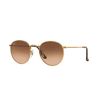 Lunettes de soleil Ray-Ban Round Metal RB3447 9001/A5 Shiny Light Bronze/Brown Gradient