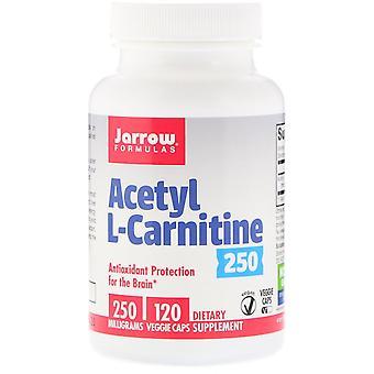 Formules Jarrow, Acétyl L-Carnitine, 250 mg, 120 Bonnets végétariens