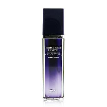 SNP Bird's Nest Revital Recovery Essence (Unboxed) (Exp. Date: 08/2021) 50ml/1.69oz