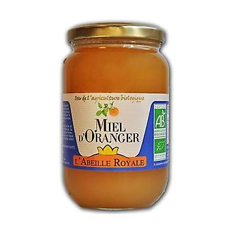 Orange honey Spain or Italy 500 g