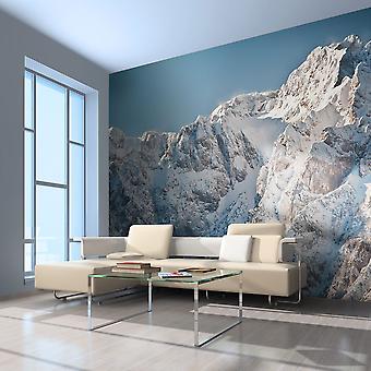 Wallpaper - Winter in the Alps
