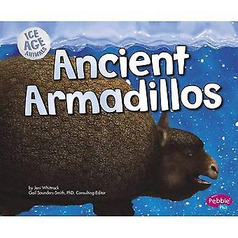 Antichi armadilli (animali era glaciale)