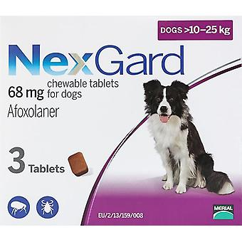 Nexgard for Dogs 10-25kg (24-60 lbs) 3 Chewables