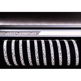 LED strip flexibel 335-2x60-12V 22W 6500K 3m B 12mm dimbaar wit IP20