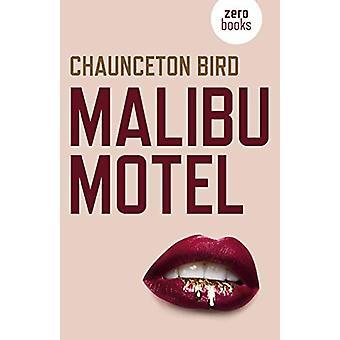 Malibu Motel - En roman om den kolossala kostnaden för gratis pengar av Chaunce