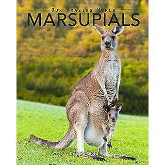 Marsupials - Amazing Pictures & Fun Facts of Animals in Nature by