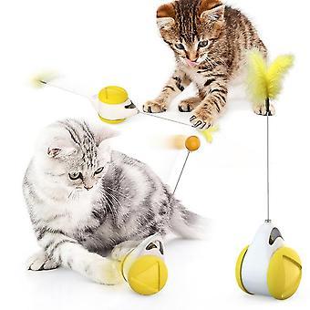 Równowaga huśtawka samochód zabawna kot nia