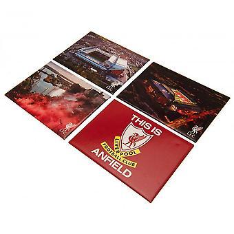 Liverpool FC Jääkaappi Magneettisetti (Pakkaus 4)