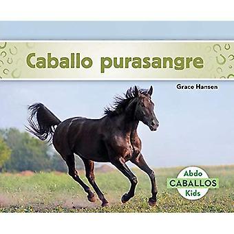 Caballo Purasangre (Thoroughbred Horses) (Spanish Version) (Caballos (Horses))