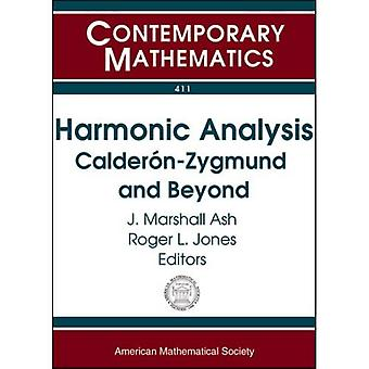 Harmonic Analysis: Calderon-Zygmund and Beyond, Vol. 411