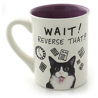 Hoots N  Howlers Cat Time Mug