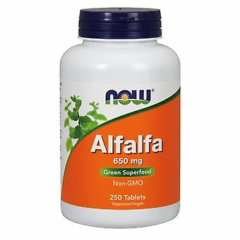 Now Foods Alfalfa, 650 mg, 250 Tabs