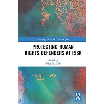 Protecting Human Rights Defenders at Risk by Edited by Alice M Nah