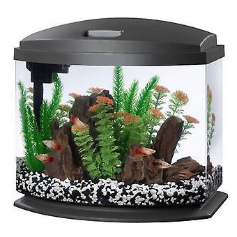 Aqueon LED MiniBow 5 SmartClean Aquarium Kit Šedá - 5 galon