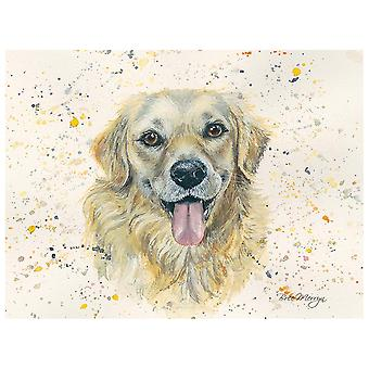 Bree Merryn Canvas Cutie, Gwen