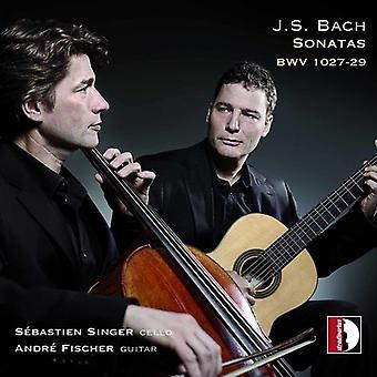 Bach, J.S. / Fischer / Singer - Sonatas Bwv 1027-1029 [CD] USA import