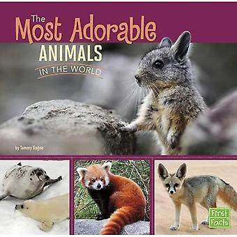 The Most Adorable Animals in the World (All About Animals)
