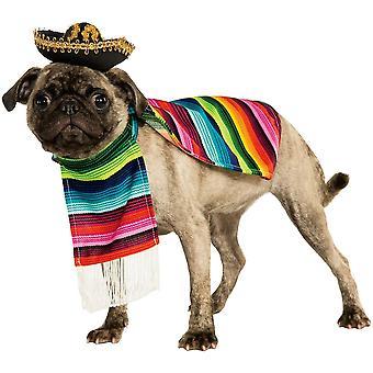 Pet Meksika Kostümü