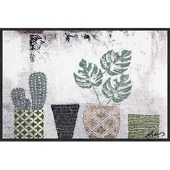 Salon lion doormat cacti 50 x 75 cm. washable dirt mat