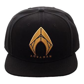 Aquaman Icon bestickte Black Snapback Cap-One Size