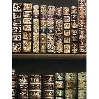 Antique Bookcase Wallpaper Brown Direct Wallpapers 575208