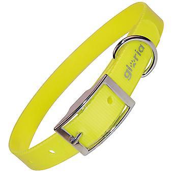 Gloria Pets TPU und Nylon Halskette (Hunde , Für den Spaziergang , Halsbänder)