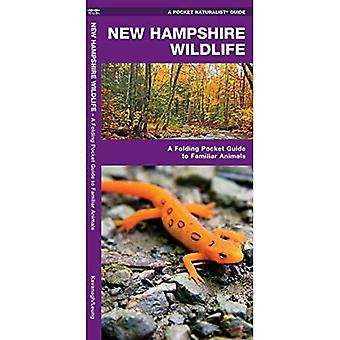 New Hampshire Wildlife (Pocket Naturalist Guides)