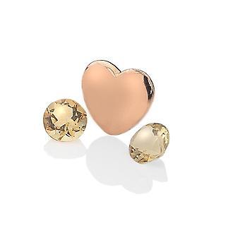 Anais Hot Diamonds Anais Rose placat cu aur Sterling Silver Noiembrie Charm AC043