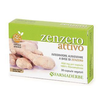 ZENZERO 30CPS 30 capsules